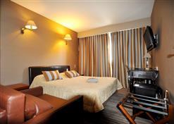 hotel-napoleon-la-roche-sur-yon-85-hot-2