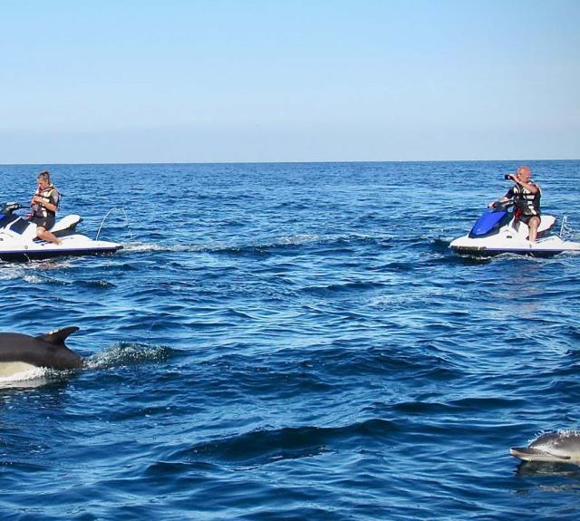 dauphin-jet-scoot-wave